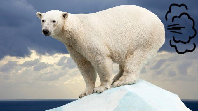 Scott Pruitts Farting Polar Bears